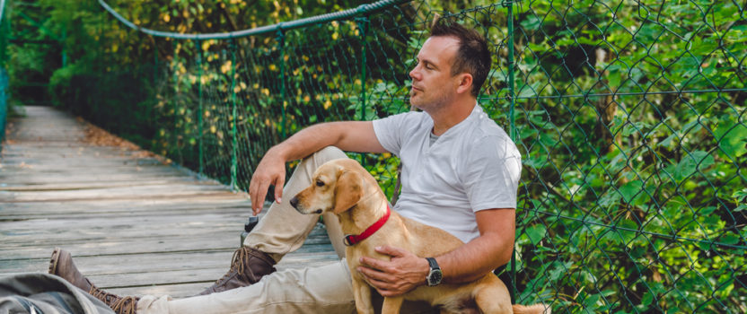 E-collars for Effective Dog Training: Busting the Myths